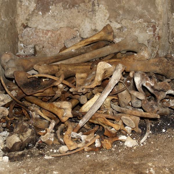 Restes òssies a l'exterior, sobre el sòl de la tomba (Autor: Maria Pujals)
