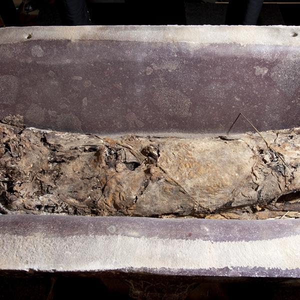 El sarcòfag banyera amb el fardel funerari (Autors: Carles Aymerich i Ramon Maroto Centre de Restauració de Béns Mobles de Catalunya)
