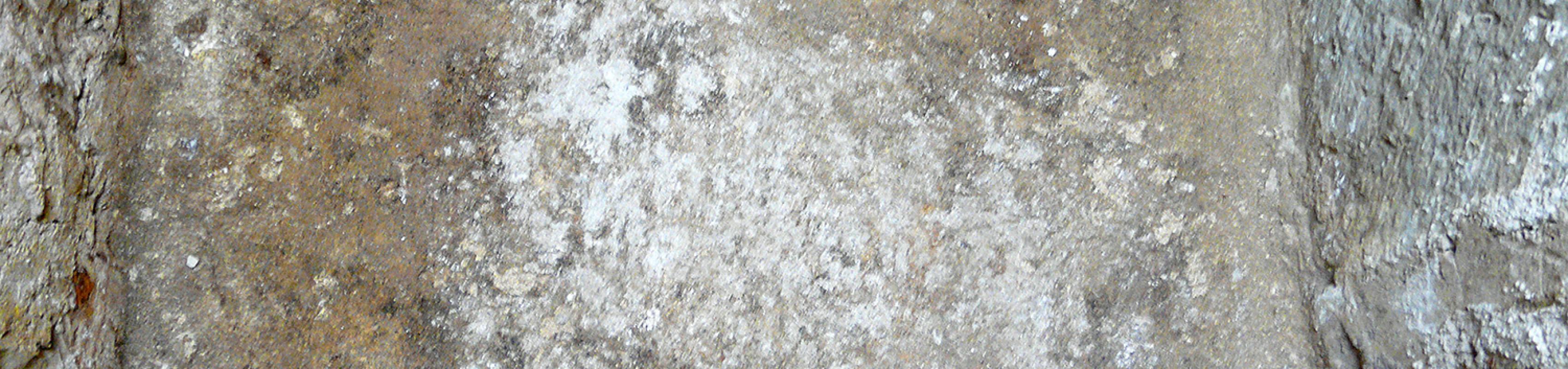Detall de la base de la tomba, constituïda per una capa de calç. (Autor: Carme Subiranas)